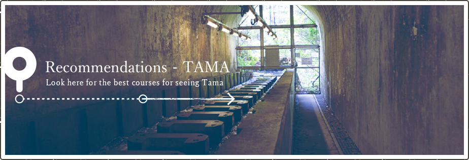 Model Course -Tama Look here for the model courses for seeing Tama.