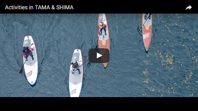 Activities in TAMA & SHIMA (Domestic)